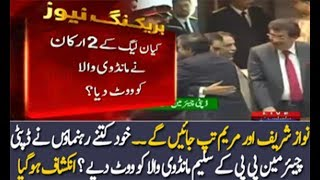 Kya PMLN Ne Saleem Mandviwala Ko Vote Diye -  How Many PMLN Senators Gave Vote To Saleem Mandviwala