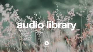 Side Steppin' - Otis McDonald | No Copyright Music YouTube - Free Audio Library