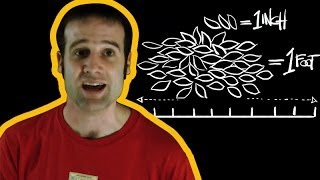 A Guide to Imperial Measurements with Matt Parker | Earth Lab