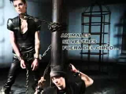 TOKIO HOTEL - Bill et Tom avec PETA - Shooting pour la lutte