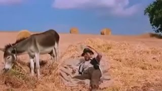 صفي النية ولا تتسرع في الحكم - مضحك جدا هههههههههه