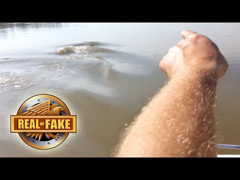 MISSOURI RIVER MONSTER real or fake