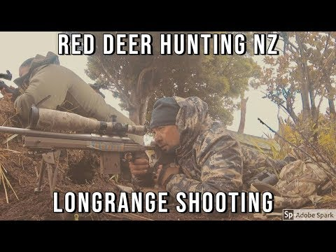 Xxx Mp4 Red Deer Hunting Ruahine Ranges Oct 2018 3gp Sex