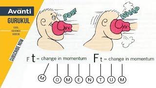 Class 9 Science - Physics - Momentum