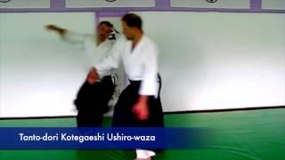Yeshua Do Video #14 Tanto-dori with Sensei Piotr Kirmiel, 5th Dan Aikido