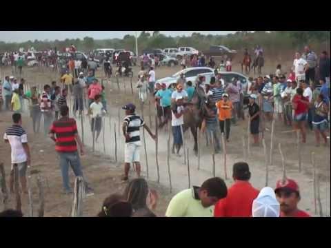 CORRIDA DE PRADO CAVALOS NO SÍTIO PINDOBA.