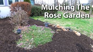 Mulching Rose Beds - Preen Weed Control Fabric