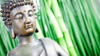3 Hour Deep Healing Tibetan Meditation Music: Soothing Music, Relaxing Music, Calming Music, ☯2341
