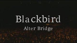 Blackbird - Alter Bridge [Official Video Lyrics]