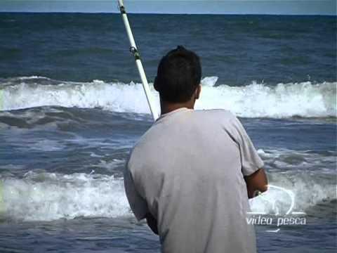 Video Pesca Corvina Negra en Mar Chiquita