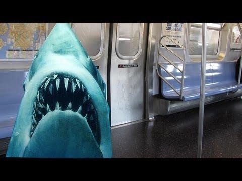 Xxx Mp4 Sharks On A TRAIN New York Subway Shark Had Nude IPhone Pics 3gp Sex