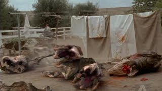 Tremors: The Series - All Creatures Deaths