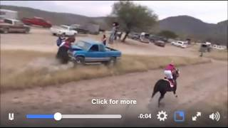 Horse Racing Abuse - Horses Being Forced Into Danger Without A Choice