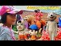 Download Nonton odong-odong hajatan - singa lodaya - alang group tandaang jaran goyang