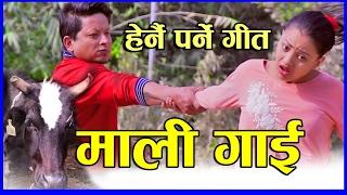 New lok dohori song 2073 | Mali gai | Devi Gharti & Baburam Panthi | Mahendra Gautam & Anu Niraula