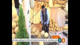 Iran Second Melon festival, Summer 1398, Gorgab city دومين جشنواره خربزه شهر گرگاب