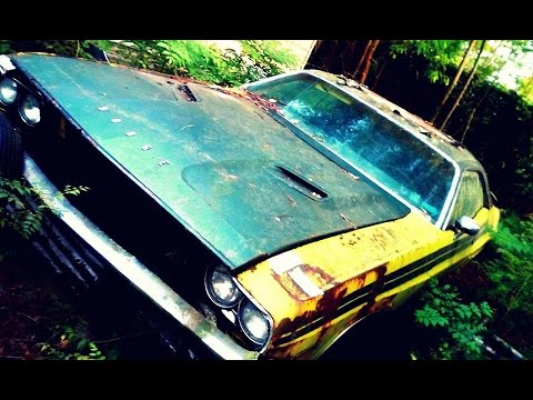 70 s Dodge Challenger RT Rotting Away