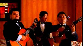 Trio Cormoran - La noche del adios