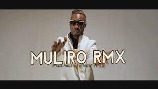 Muliro Remix - Mikie Wine & Master Parrot New Uganda Music Video 2017