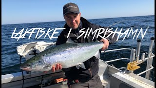 laxfiske (Simrishamn) 2019