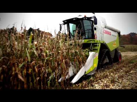 Mais dreschen | Corn treshing | SCHLAMM| Claas Lexion 530TT+460TT |