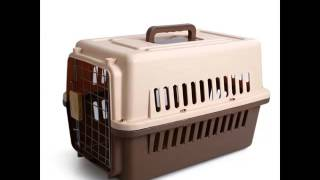 Dog Cage Plastic Set Of Useful Picture Ideas | Dog Cage Plastic Dogs