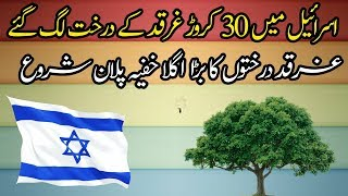 Planting and Growing More Gharqad Trees All Over the World