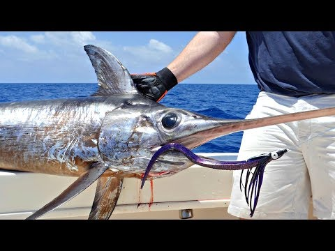 How To Daytime Deep Drop Swordfishing with Hogy Lures