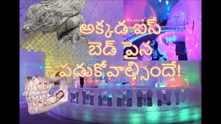 Watch Unbelievable Things|నమ్మలేని నిజాలు|Unbelievable Things on Earth|Unbelievable Man Made Things
