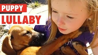 Little Girl Sings Rescue Dog Lullaby | Puppy Love