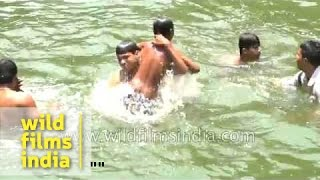 Young boys dive in for a swim!