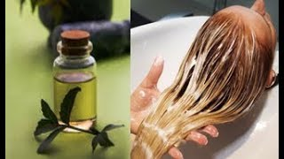 Massage Your Scalp With This Oil, You Will Never Lose A Single Hair After THIS