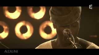 Alcaline, le Concert : Keziah Jones et Ben l'Oncle Soul -