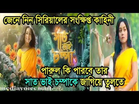 Xxx Mp4 জেনে নিন সাত ভাই চম্পা সিরিয়ালের সংক্ষিপ্ত কাহিনী Zee Bangla Serial Saat Bhai Champa 3gp Sex