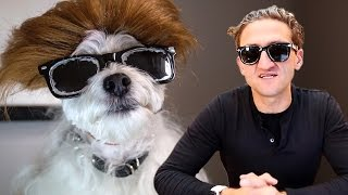 Makeover Transforms Dog Into Famous YouTuber Casey Neistat