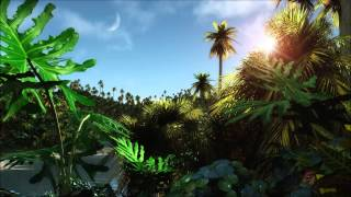 Hot jungle day - the relaxing sound of the jungle