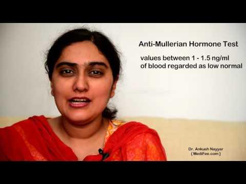 Xxx Mp4 Anti Mullerian Hormone AMH Test Fertility And Ovarian Function Test 3gp Sex