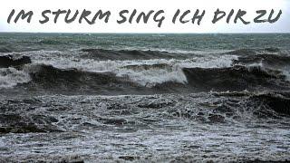 Im Sturm - Praise you in this storm (deutsch)