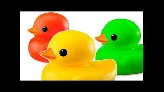 Patos de goma en la piscina con Colores para ninos con Canciones infantiles con bano