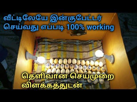 Xxx Mp4 1000 ரூபாய் செலவில் இன்குபேட்டர் செய்யும் முறை How To Make Homemade Incubator In Tamil 3gp Sex