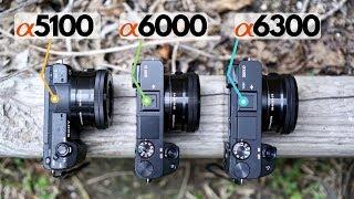 A5100 vs A6000 vs A6300: A Practical Comparison