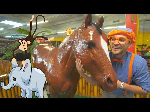 Blippi Learns about Jungle Animals for Kids Educational Videos for Toddlers
