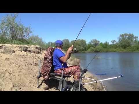 рыбалка на десне боденьки