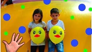 Playground For Children - Duck Balloons & INGRID Finger Family Song for Babies