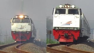 Face to face with a train.