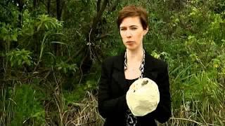 ABC News - Dr Grainne Cleary Bogul Release (2011)