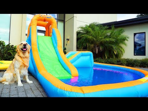 DOG GETS PERSONAL WATER PARK FOR THIRD BIRTHDAY