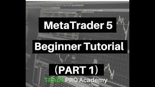 MetaTrader 5 Beginner Tutorial (Part 1)