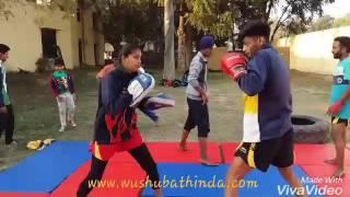 Wushu Practice