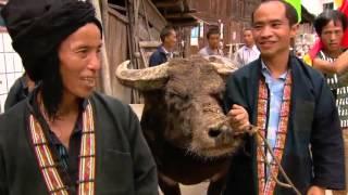Dokumentation China 2015 - Eine Reise durch China [Doku Deutsch 2015] [HD]